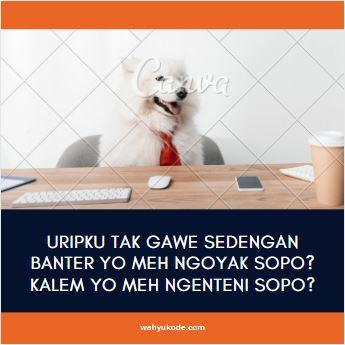 Gambar Kata Bijak Bahasa Jawa Lucu Wahyukode